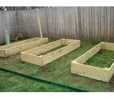 Best How to build a raised bed garden plot