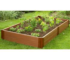 Best How to build a raised bed garden step by step