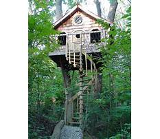 Best How to build a tree house model