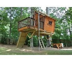 Best How to build a treehouse for adults