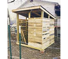 Best How to build a wood pallet chicken coop