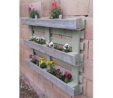 Best How to build a wood pallet flower box