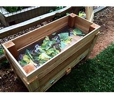 Best How to build a wood worm box