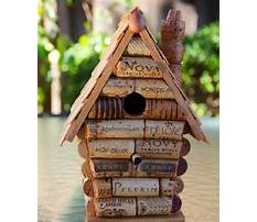 Best How to build bird houses videos