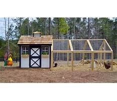 Best How to build chicken houses and runs