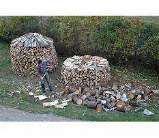 Best How to dry lumber for woodworking