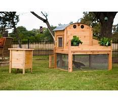 Best How to make a chicken coop uk.aspx