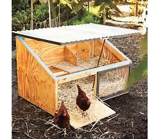 Best How to make a little chicken house