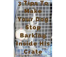 Best How to make a puppy stop barking in his crate.aspx