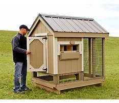 Best How to make your chicken coop better