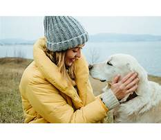 Best How to stop a dog from barking so much