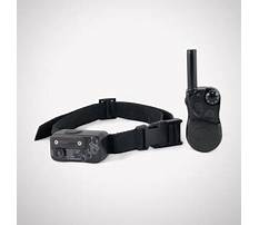 Best How to train dog to come with shock collar.aspx