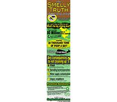 Best How to train dogs not to chew.aspx