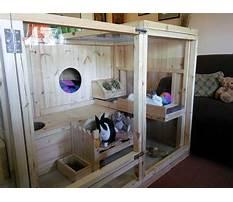 Best Huge indoor rabbit enclosures
