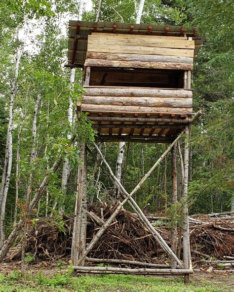 Hunting-Tree-Stand-Plans