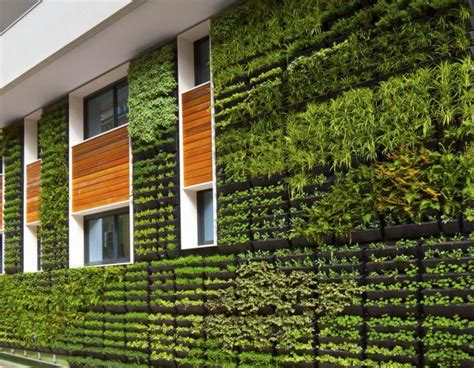 Hydroponic Living Wall Plans