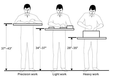 Ideal Woodworking Bench Height Dimensions