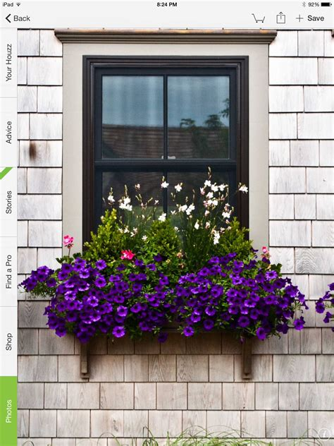 Ideas For Window Planter Boxes
