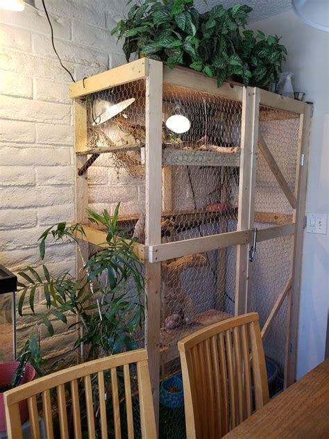 Iguana Enclosure Diy Wood
