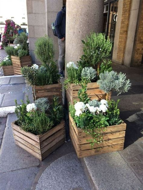 Images Plants For Small Planter Boxes
