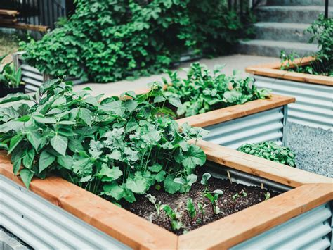 Inexpensive Raised Bed Ideas