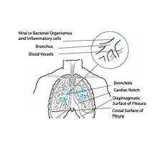 Best Is pressure treated wood toxic.aspx