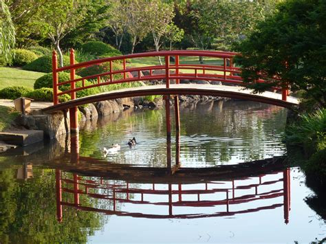 Japanese Garden Bridges Australia