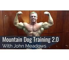 Best John meadows mountain dog training program.aspx