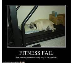 Best Jokes about dog training.aspx