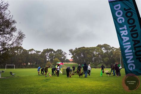 Joondalup dog training club Image