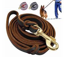 Best K9 dog training leads