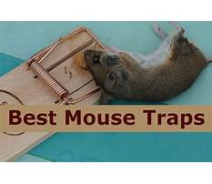 Best Keep mouse away.aspx