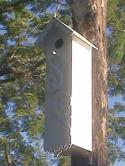 King-Parrot-Nesting-Box-Plans
