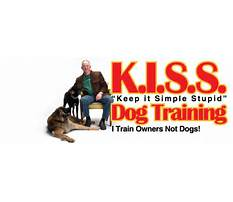 Best Kiss dog training shawnee ks
