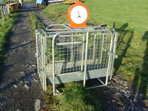Lamb-Weigh-Crate-Plans