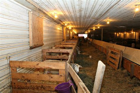 Lambing Shed Plans