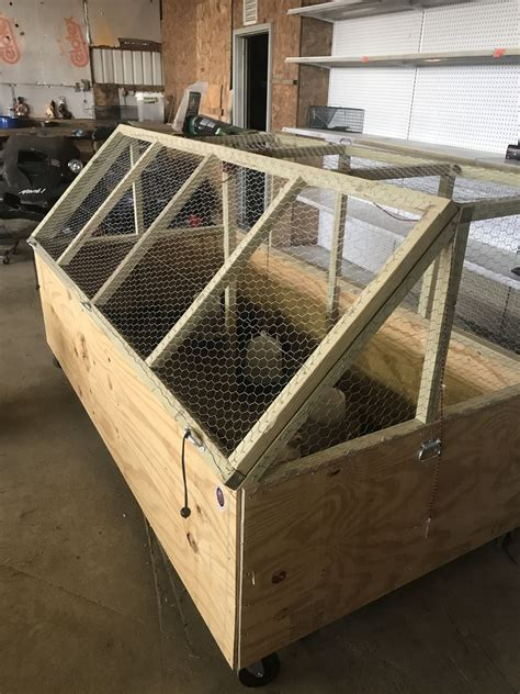Large Chicken Brooder Plans Ideas