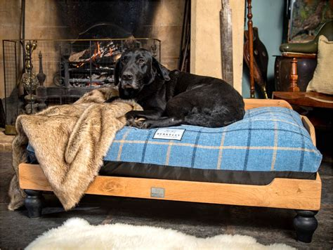 Large Dog Bed Diy From Old