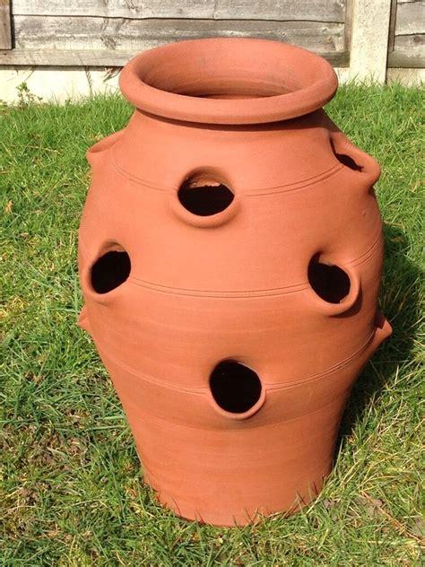 Large Strawberry Pot