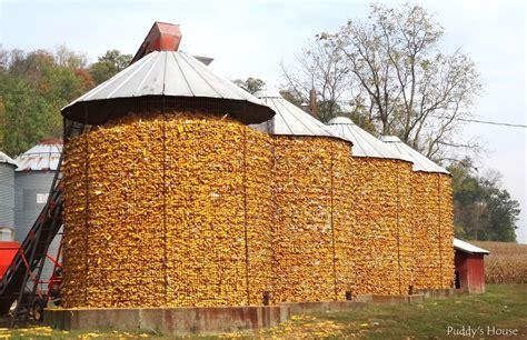 Large-Cylinder-Diy-Corn-Crib