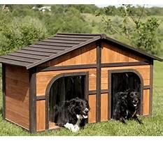 Best Large double dog house plans