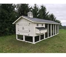 Best Large fancy chicken coops