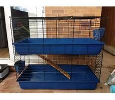 Best Large indoor rabbit cage uk