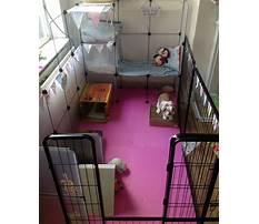 Best Large indoor rabbit enclosures