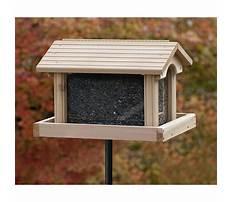 Best Large wood bird feeders