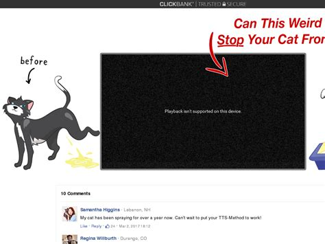 [click]learn Cat Spray Stop - Watch This Animated Vsl Promo .