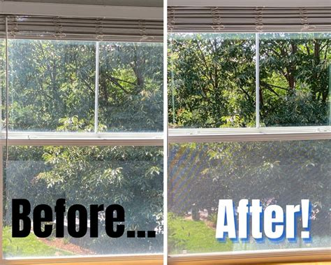 Leave your windows shining like a diamond with the help of commercial window cleaning services!