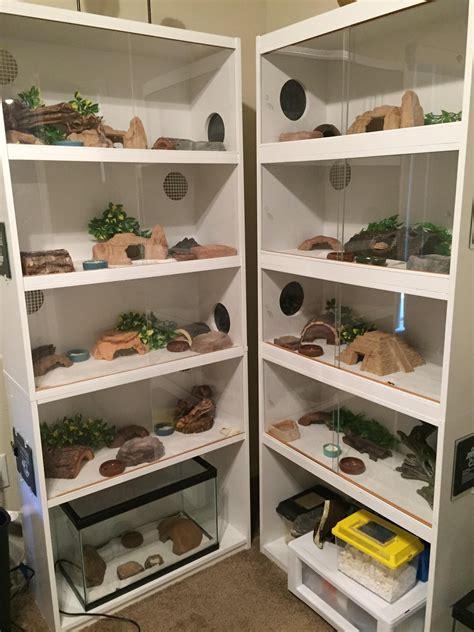 Leopard-Gecko-Rack-Ideas-Diy