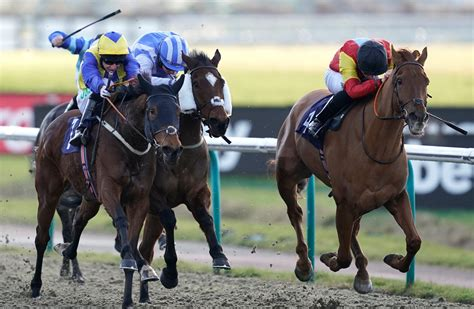 Lingfield Park Horse Racing Results Today And Meydan Horse Racing Results