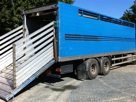 Livestock Truck Box Plans Cows For Sale